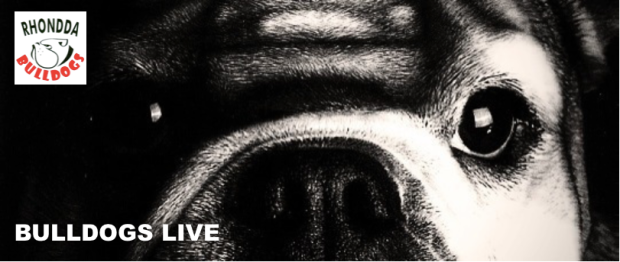 Bulldogs Live