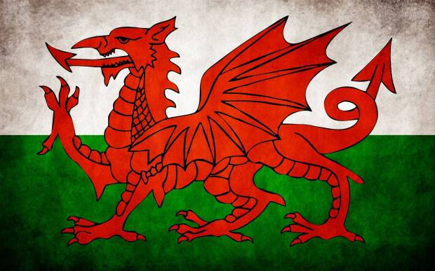 15488-flags-welsh-flag